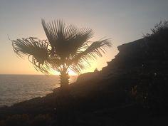 Adeje-Tenerife