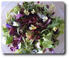 Grøn Salat med Spiselige Blomster