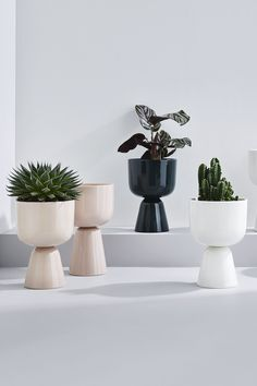 Hottest Snap Shots Ceramics pots simple Style Iittala's new arrivals in The Nappula plant pot is a fun play on the signature silhouette w Nordic Design, Nordic Style, White Highlights, House In Nature, Curve Design, Interior Plants, Interior Design, Ceramic Pots, Marimekko