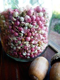 Peruvian peppercorns.