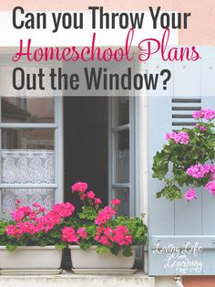 How flexible are you and can you throw your homeschool plans out the window?