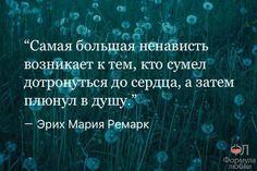 11229365_967890929960119_5148366759849223812_n.jpg (604×403)