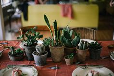 cacti & succulent centerpiece by Beth Kirby | {local milk}, via Flickr Table decoration