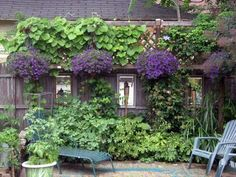 wow this is beautiful!  And you all know how obsessed I am with purple in my garden!