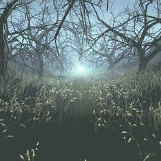 Light-Bound ∞ Endless Force wor - codysampson | ello