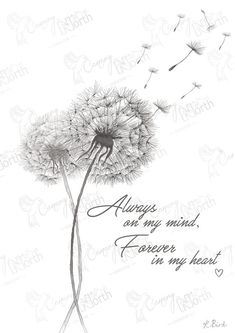 Dandelion - Hand Drawn Digital Illustration with free postage - Can be personalised to make the perfect print for you! Dandelion Tattoo Quote, Dandelion Tattoo Design, Dandelion Flower, Dandelion Drawing, Logo Fleur, Thé Illustration, Cursive Fonts, Grief, Tattoo Quotes