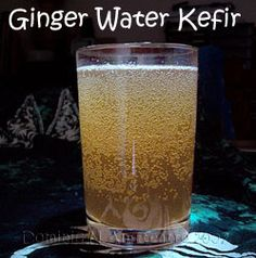 ginger water kefir | Exhaustive site on dairy kefir. Tech data. Highly peer recommended. Substantiated study. Dairy & water kefir information