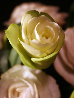 Rose carved from a zucchini -apeelingfruit.com/Pam Pfropper