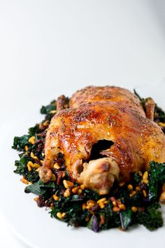 A traditional Christmas duck is great on a holiday menu. http://www.the-pregnancy.net/traditional-christmas-duck-recipe.html