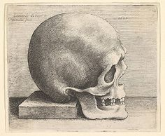 Wenceslaus Hollar (Wenzel Vaclav) (Bohemian, 1607–1677). Right Profile of the Skull, 1645. The Metropolitan Museum of Art, New York. Purchase, Joseph Pulitzer Bequest, 1917 (17.50.18-101)  #skull #Halloween