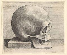 Wenceslaus Hollar (Wenzel Vaclav) (Bohemian, 1607–1677). Right Profile of the Skull, 1645. The Metropolitan Museum of Art, New York. Purchase, Joseph Pulitzer Bequest, 1917 (17.50.18-101) #skull #Halloween