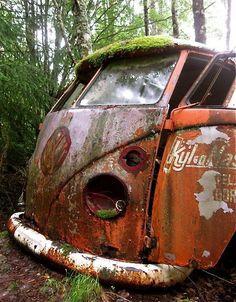 VW Bus. Mossy Old Volkswagen!