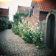 veere, zeeland, the netherlands Places To See, Places Ive Been, Brick And Stone, Lomography, Architecture, Bricks, Provence, Netherlands, Holland