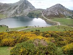 Lagos de Covadonga ( Asturias,España)