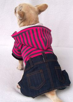 canada goose jackets for dogs