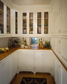 What if one made a walk in pantry like this that had a look through like in the back with a sliding door going into your kitchen... you could load up everything you need in the pantry and just grab it from the other side when you're ready!!