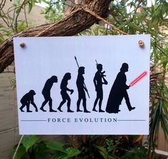 Placa Force Evolution 15x20