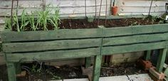 Raised bed from palllets