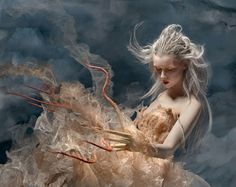 Vivid Fantasy Imagery with a Dark Twist by Ransom & Mitchell