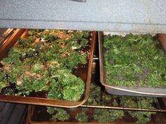 Kristen's Recipe for Kale Chips