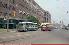 Bedford Park, Yonge Street, Expansion Joint, Grand Island, Greater Toronto Area, Evening Sandals, Mount Pleasant, Park Avenue, Buses