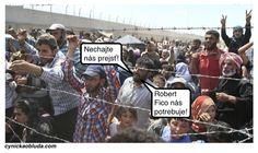 Cynická obluda: Utečenci v predvolebnej kampani