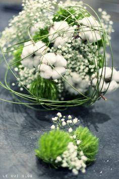 http://leouiblog.tumblr.com/post/40512779245/diy-bouquet-et-photo-le-oui-blog-fleurs-france