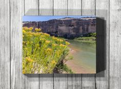 Perfect yellow or green bathroom decor, kitchen decor or living room home decor. This Utah landscape wall art print includes summer flowers on the banks of the Green River in Dinosaur National Monument.    Metal prints, gallery wrap canvas prints and photographic paper prints are available. Shop now at http://rogueauroraphotography.com/wall-art-shop/green-river-gold/.