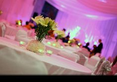 The Wedding Co. | Gallery