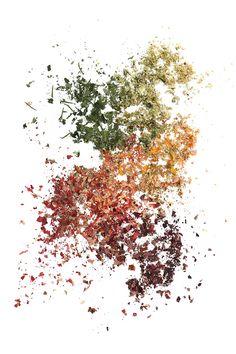 fall pigment (mary jo hoffman)
