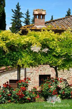 Tuscany, Italy | Italian wine country | Monteriggioni, Italy | photography by Laura Evancich