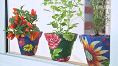 Chita na Decor Painted Clay Pots, Painted Flower Pots, Bottle Painting, Diy Painting, Diy Y Manualidades, Free Printable Art, Decoration, Decoupage, Diy And Crafts