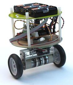 Inverted pendulum robot
