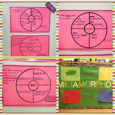 Thinking Maps - vocab (looks a lot like word masters)