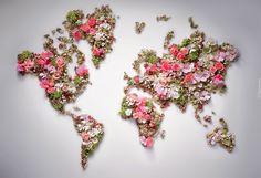 Edycja Tapety: Kompozycja, Kolorowe, Kwiaty, Mapa Świata