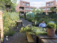 gemeenschappelijke tuin Plants, Image, Atelier, Seeds, Planters, Plant, Planting