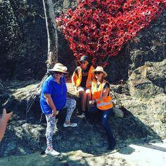 Swell girls installing the poppies for ANZAC Day dawn service #currumbinbeach @currumbinrsl @currumbin_slsc by rowlye http://ift.tt/1X9mXhV
