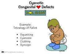 cyanotic and acyanotic heart defects - Google Search