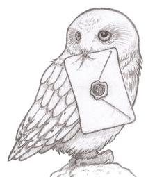 Hedwig Owl Drawing