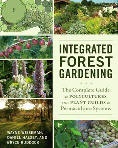 Integrated Forest Gardening by Wayne Weiseman, Daniel Halsey, Bryce Ruddock