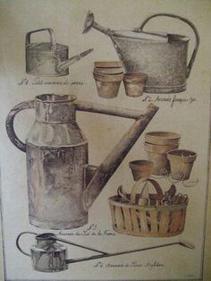 ... old watering cans, illustration...
