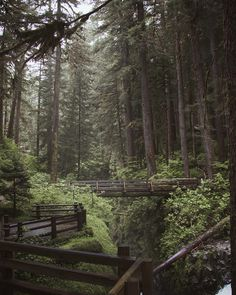 Gorgeous Landscapes of The East Coast by Jessica Olm #inspiration #photography