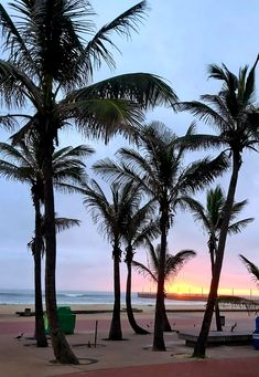 Durban north beach, sunrise Beach Sunrise, Sunset, North Beach, Celestial, Outdoor, Outdoors, Sunsets, Outdoor Games, The Great Outdoors