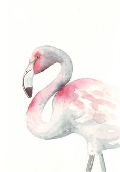 Flamingo Watercolor... Yes?