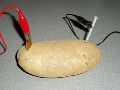 Potato Power - Activity