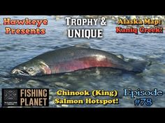 31 Best Fishing Planet - Trophy and Unique Species images in