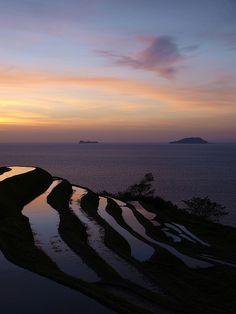 Sunrise at terrace rice fields in Tango peninsula, Kyoto
