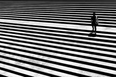 Sea of lines – Imagery of darkness and light.