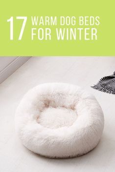 Get the best deal for Cushion Faux Fur Dog Beds from the largest online selection at DogMega. Dog Names Unique, Unique Dog Breeds, Small Dog Breeds, Funny Dog Memes, Funny Dogs, Miniature Dog Breeds, Cute Dog Beds, Therapy Dog Training, Dog Breeds List