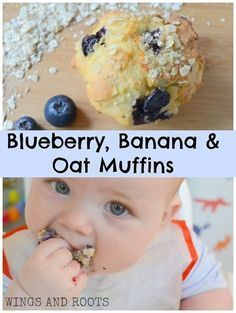 SUGAR FREE Blueberry Banana Oat Muffins - perfect for baby led weaning! Muffins, muffin recipes